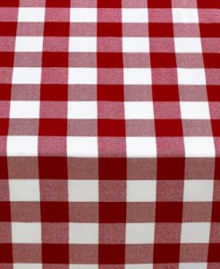 Red and white checked picnic cloth