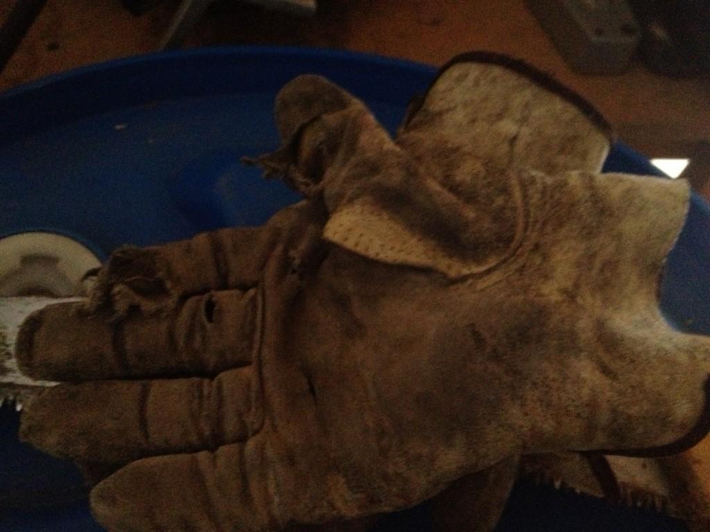 Lane's gloves