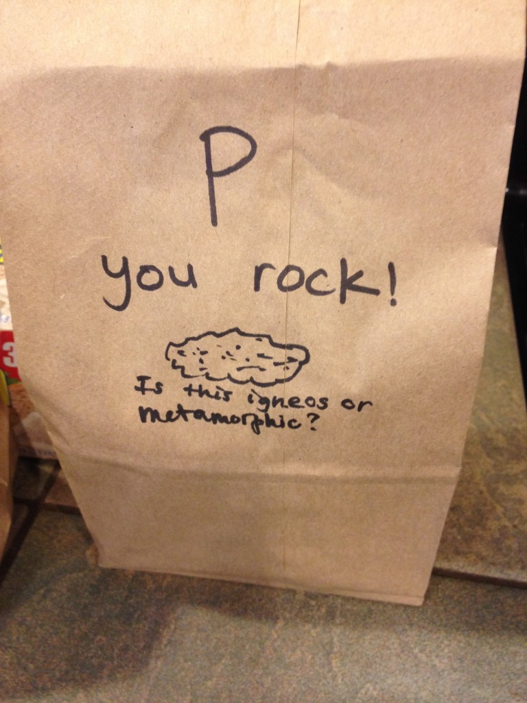 You rock! sack lunch