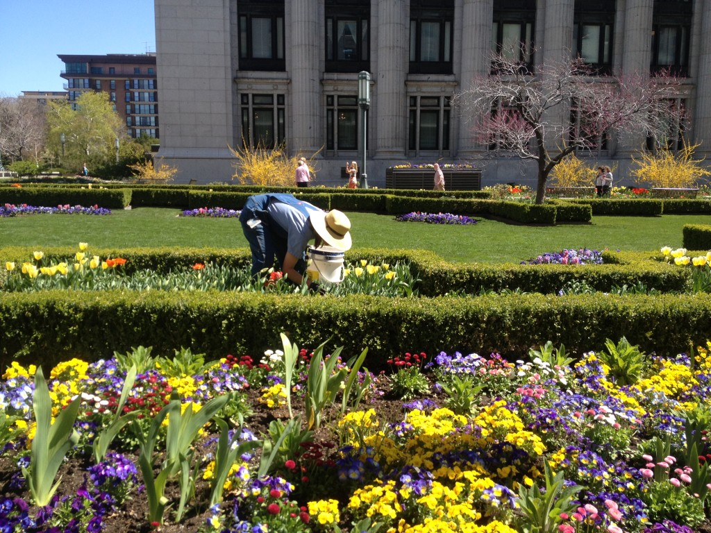 temple square woman gardener