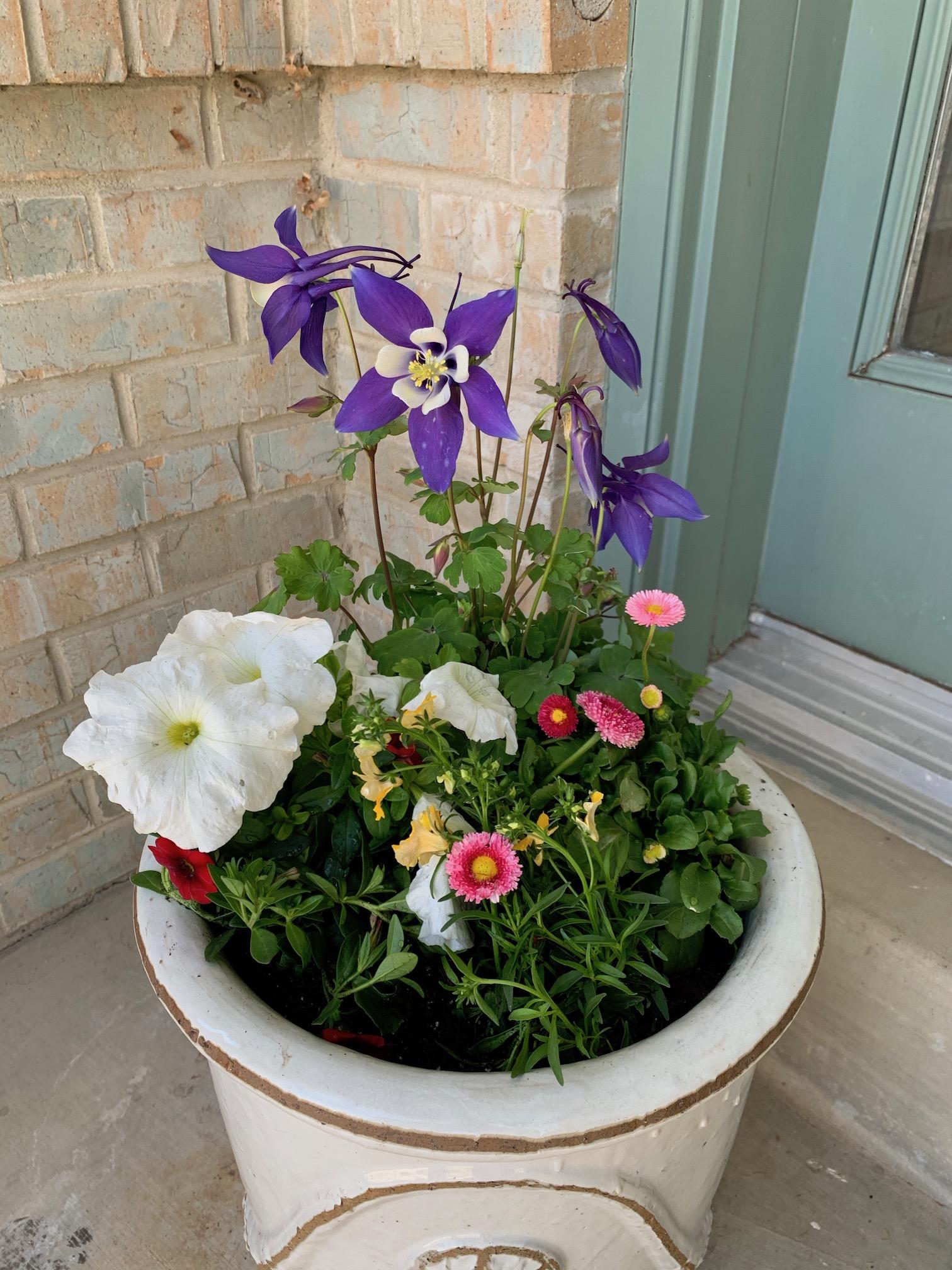 April, in bloom