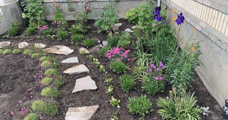 2019 Flower Garden